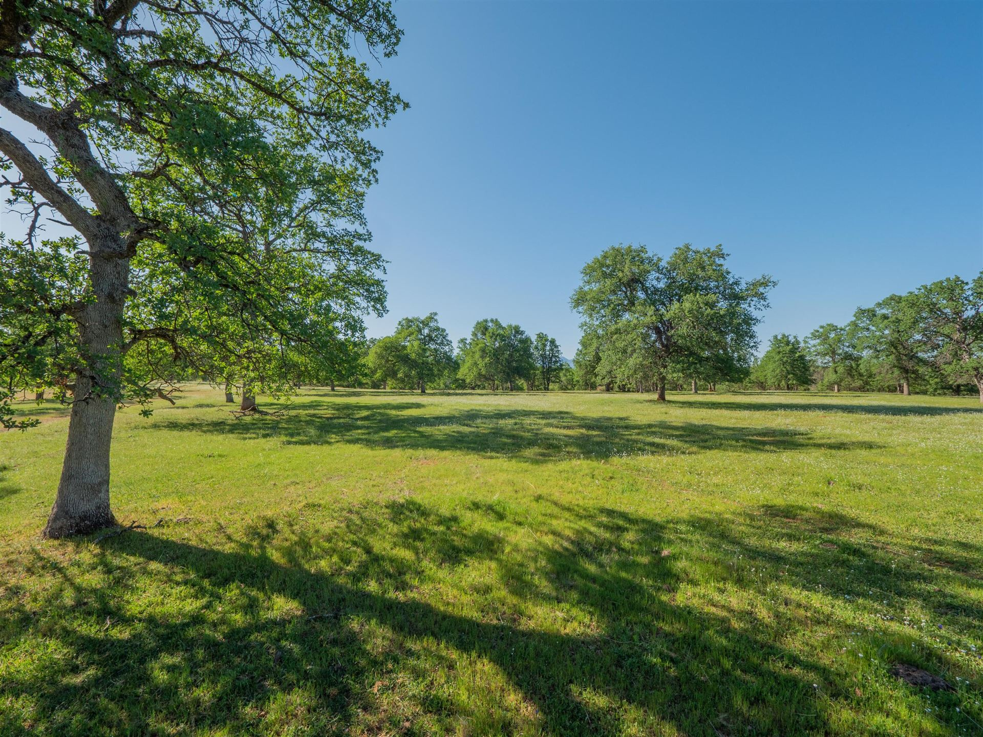 Photo of 15764 Gas Point Rd, Cottonwood, CA 96022 (MLS # 21-2321)