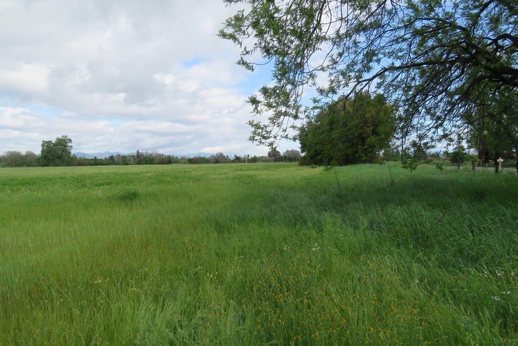 Photo for 7740 Churn Creek Rd, Redding, CA 96002 (MLS # 21-4851)