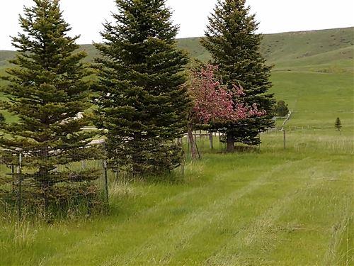 Photo of 72 Gallatin Drive, Big Horn, WY 82833 (MLS # 20-234)
