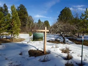 Photo of Lot 7 Mountain View Road, Story, WY 82842 (MLS # 15-348)