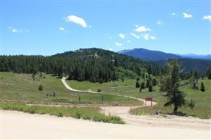 Tiny photo for Red Grade Road, Big Horn, WY 82833 (MLS # 19-440)