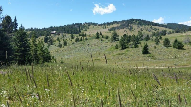 Photo for Red Grade Road, Big Horn, WY 82833 (MLS # 19-440)