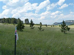 Photo of Billy Creek Access Rd, Buffalo, WY 82834 (MLS # 19-467)