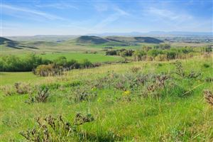 Tiny photo for Lot 13 Shepards Road, Big Horn, WY 82833 (MLS # 19-482)