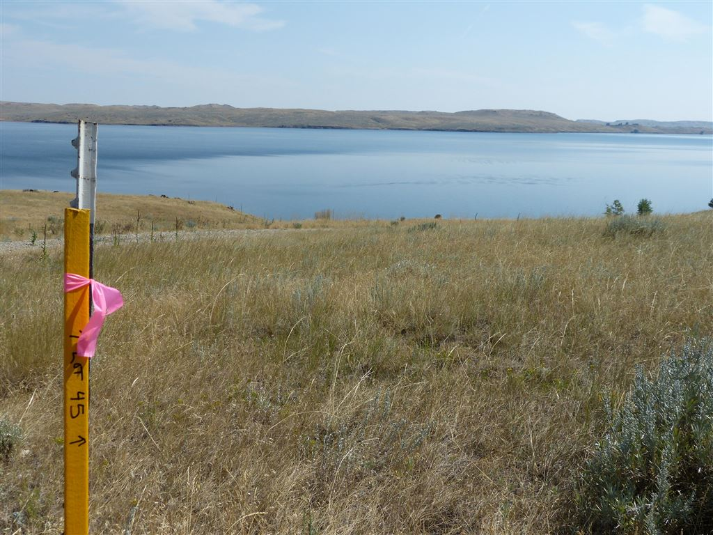 Photo for 45 Waterfront Place, Buffalo, WY 82834 (MLS # 19-508)