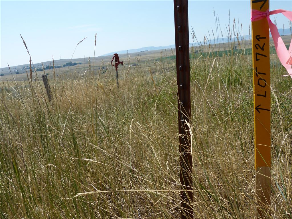 Photo for Lot 72 Shoreline Drive, Buffalo, WY 82834 (MLS # 19-512)