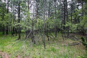 Tiny photo for Aspen Lane #Lots 92 & 93, Story, WY 82834 (MLS # 19-586)