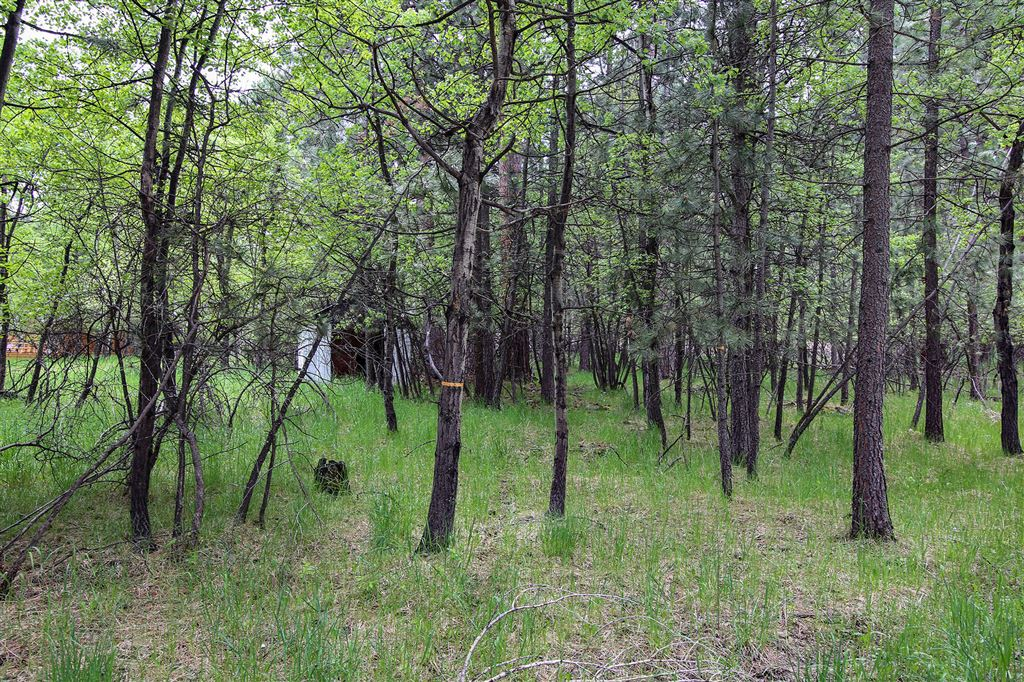 Photo for Aspen Lane #Lots 92 & 93, Story, WY 82834 (MLS # 19-586)