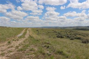 Tiny photo for TBD Beatty Gulch Road, Sheridan, WY 82801 (MLS # 19-598)