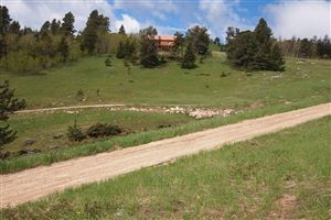 Tiny photo for TBD Canyon Road #(Lot 2), Big Horn, WY 82833 (MLS # 19-631)