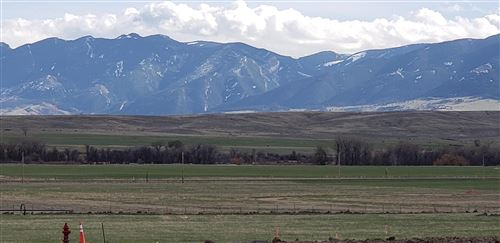 Photo of Lot 12 TR Lane, Ranchester, WY 82839 (MLS # 20-632)