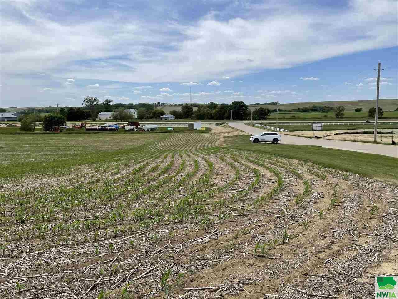 Photo for TBD Clearview St, Moville, IA 51039 (MLS # 813450)