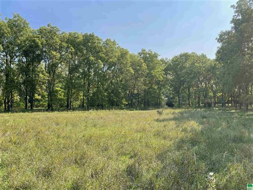 Photo of 38 W Kings Hwy, Sioux City, IA 51104 (MLS # 814679)