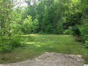 Photo of Backwoods Way, Gatlinburg, TN 37738 (MLS # 223007)