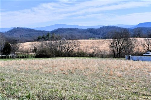 Photo of 1435 Instrumental Ave, Sevierville, TN 37876 (MLS # 241049)