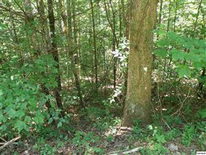 Photo of Lot 11-C Mountain Rest Way, Sevierville, TN 37876-9999 (MLS # 223055)