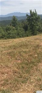 Photo of 2270 Trace Way, Sevierville, TN 37862 (MLS # 224069)