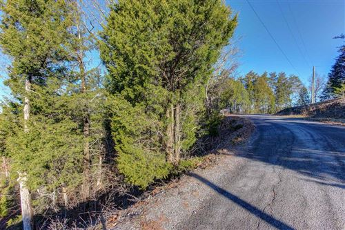 Photo of L29 Driftwood Circle, Sevierville, TN 37876 (MLS # 245074)