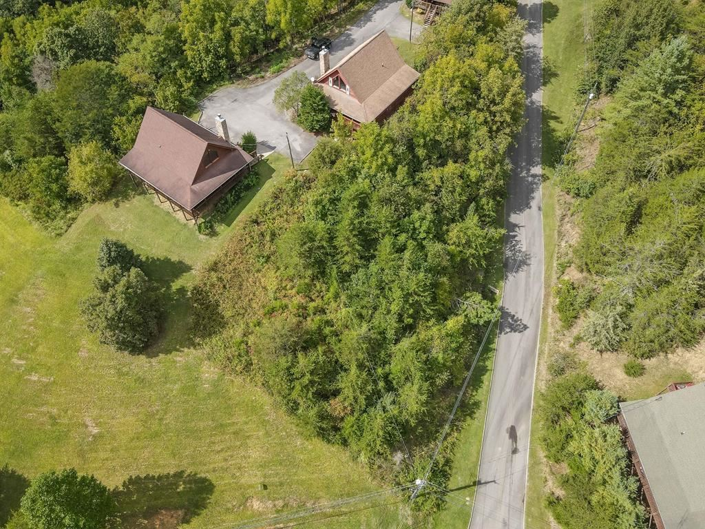 Photo of Lot 43 Wedge Trailed Ln, Sevierville, TN 37876 (MLS # 245079)