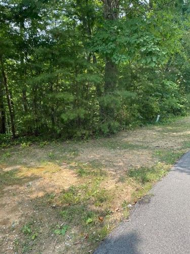Photo of Lot 5-A Gold Dust Dr, Pigeon Forge, TN 37863 (MLS # 244097)