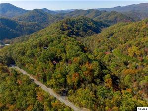 Photo of Settlers View Ln, Sevierville, TN 37862 (MLS # 224112)
