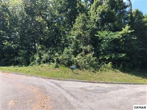 Photo of Lot 21 Warbler Point, Sevierville, TN 37876 (MLS # 224126)