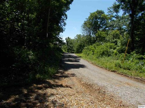 Photo of Parcel Parcel 023 00 Netty Mountain Road, Del Rio, TN 37727 (MLS # 217147)