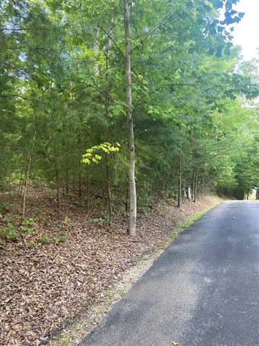 Photo of Redtail Rd, Sevierville, TN 37862 (MLS # 245152)