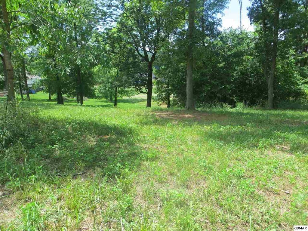 Photo of Chances Ridge Dr, Sevierville, TN 37876 (MLS # 244209)