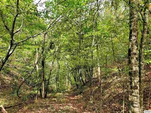 Photo of Lot 42 Shell Mountain Road, Sevierville, TN 37876 (MLS # 225229)