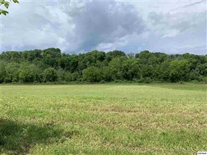 Photo of Lot 16-R Secluded River Circle, Parrottsville, TN 37843 (MLS # 222232)