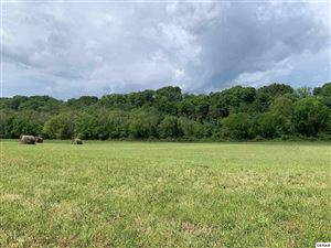 Photo of Lot 16-R1 Secluded River Circle, Parrottsville, TN 37843 (MLS # 222234)