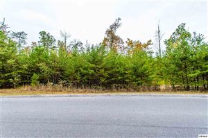 Photo of Lot 69 Smoky Cove Rd, Sevierville, TN 37876 (MLS # 225235)