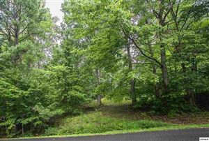 Photo of Lot 142 Overlook Ct, Sevierville, TN 37876 (MLS # 221285)