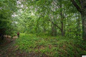 Photo of Lot 501 Silver Poplar Ln, Sevierville, TN 37876 (MLS # 221286)