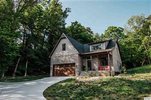 Photo of 1271 FLATWOOD RD, SEVIERVILLE, TN 37862 (MLS # 221321)
