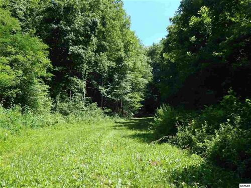 Photo of 5.69 Acres Pea Hollow Rd., Sevierville, TN 37862 (MLS # 217360)