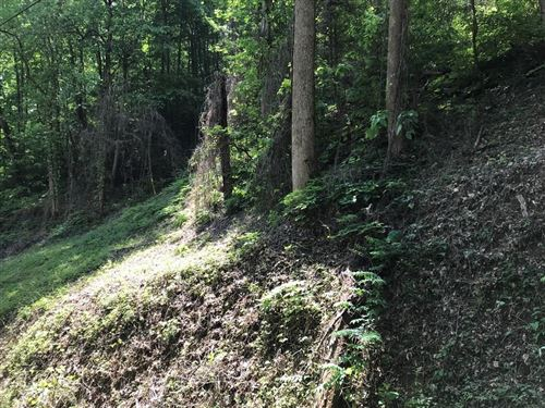 Photo of Black Walnut Flats Rd., Sevierville, TN 37862 (MLS # 242412)