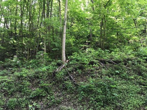 Photo of Black Walnut Flats Rd, Sevierville, TN 37862 (MLS # 242413)