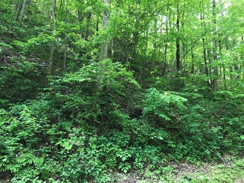 Photo of Black Walnut Flats Rd, Sevierville, TN 37862 (MLS # 242414)