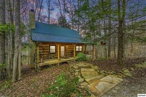 Photo of 2983 Walden Flats Way, Sevierville, TN 37862 (MLS # 222433)