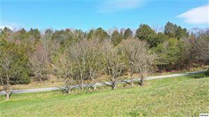 Photo of Lot 1-A Nob Hill Dr, Newport, TN 37821 (MLS # 221446)