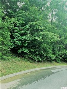 Photo of lot 217 Golden Eagle Way, Pigeon Forge, TN 37863 (MLS # 223479)