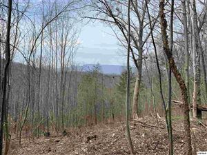 Photo of Lot 4 & 6 Eagle Mountain Road, Newport, TN 37821 (MLS # 221541)
