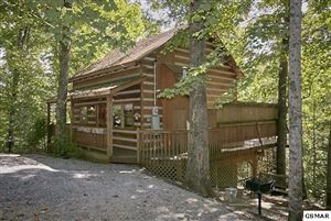 Photo of 1918 Charles Lewis Way, Sevierville, TN 37876 (MLS # 220551)