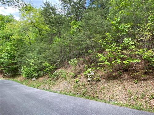 Photo of Racoon Hollow Way, Sevierville, TN 37738 (MLS # 242563)