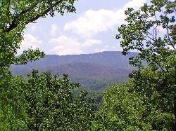 Photo of 301 MATTERHORN DR, Gatlinburg, TN 37738 (MLS # 245586)