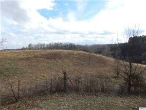 Photo of 20.75 Acres S New Era Rd 750 New Era on Tax Map, Sevierville, TN 37862 (MLS # 220590)
