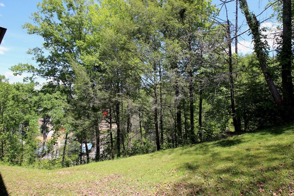Photo of 616 Turkey Nest Rd. Unit 104 Unit #104 Windy Oaks Condos, Gatlinburg, TN 37738 (MLS # 242597)