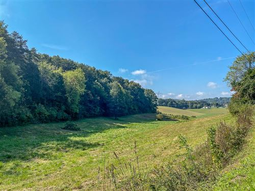 Photo of 137 James Ferry Rd Tract 1, Kingston, TN 37763 (MLS # 245641)